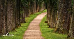 choice theory and life