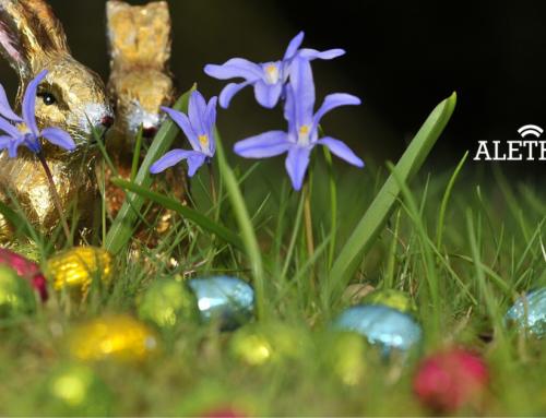 Easter Fundraiser For MQI
