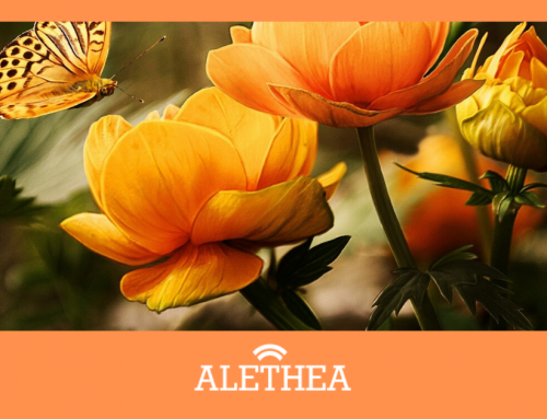 Our Mental Health Is Our Wealth | FREE Support For Alethea Users